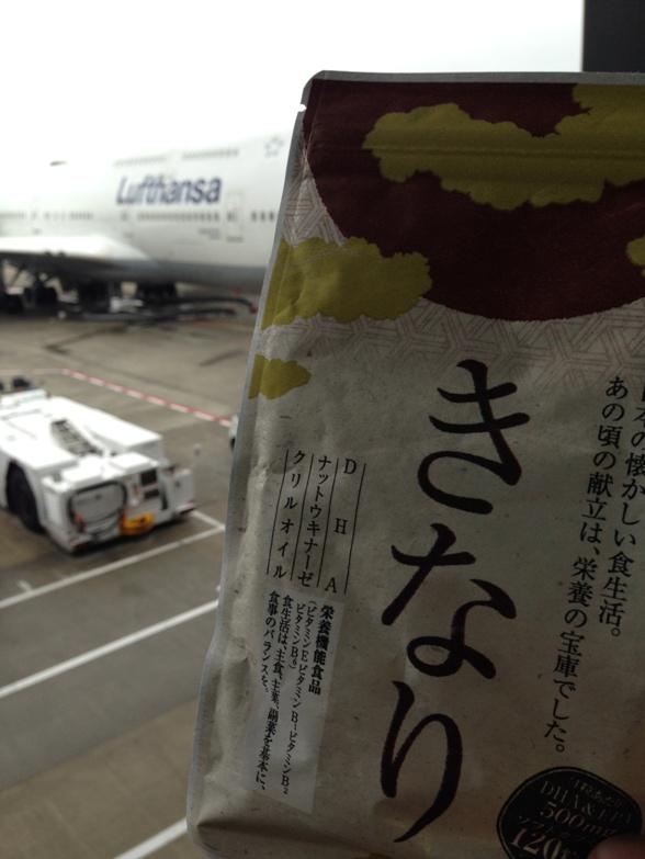 飛行機とDHAサプリメント【きなり】
