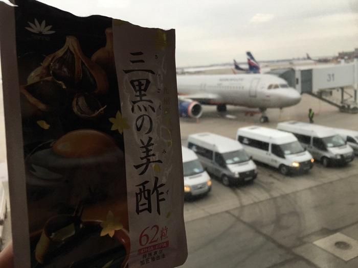 花菜・三黒の美酢と飛行機